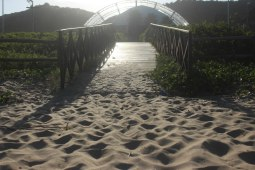 Mato e areia dificultam a passagem com uso da cadeira de rodas. | Foto: Andressa Zuffo