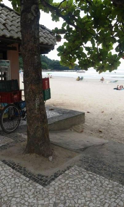 Rampa obstruída por árvore. | Foto: Thiago Júlio