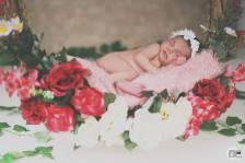 Newborn - Eduardo Werner
